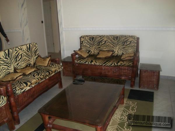 Appartement meubl en location yaound mvan for Appartement meuble a yaounde