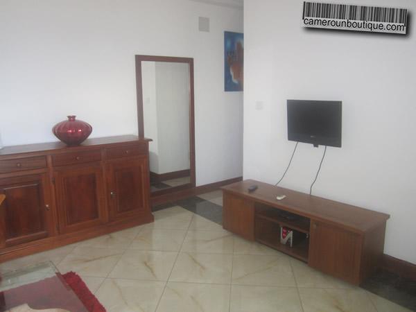 location appartement meuble yaounde cameroun bastos