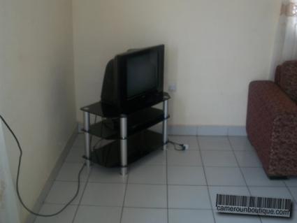 Salon maison meublé Yaoundé Nkomo Résidence des palmiers