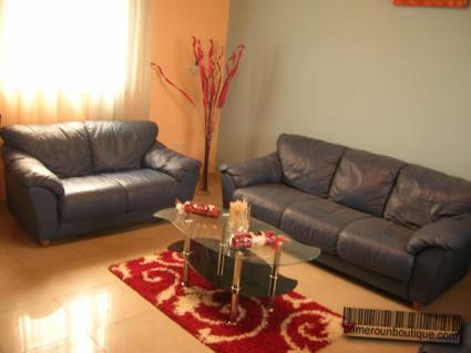 Salon appartement meublé Douala Akwa